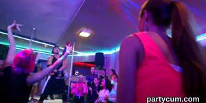 Wacky cuties get absolutely silly and undressed at hardcore party - video 1